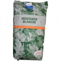 MOUTARDE BLANCHE 10KG